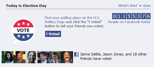 Facebook_voting